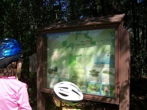 Jackson Baldwin Trail 15 miles of easy riding