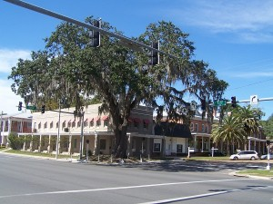 An awesome tree in Madison, FL