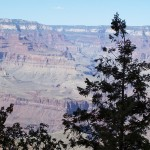 The North Rim from the South Rim